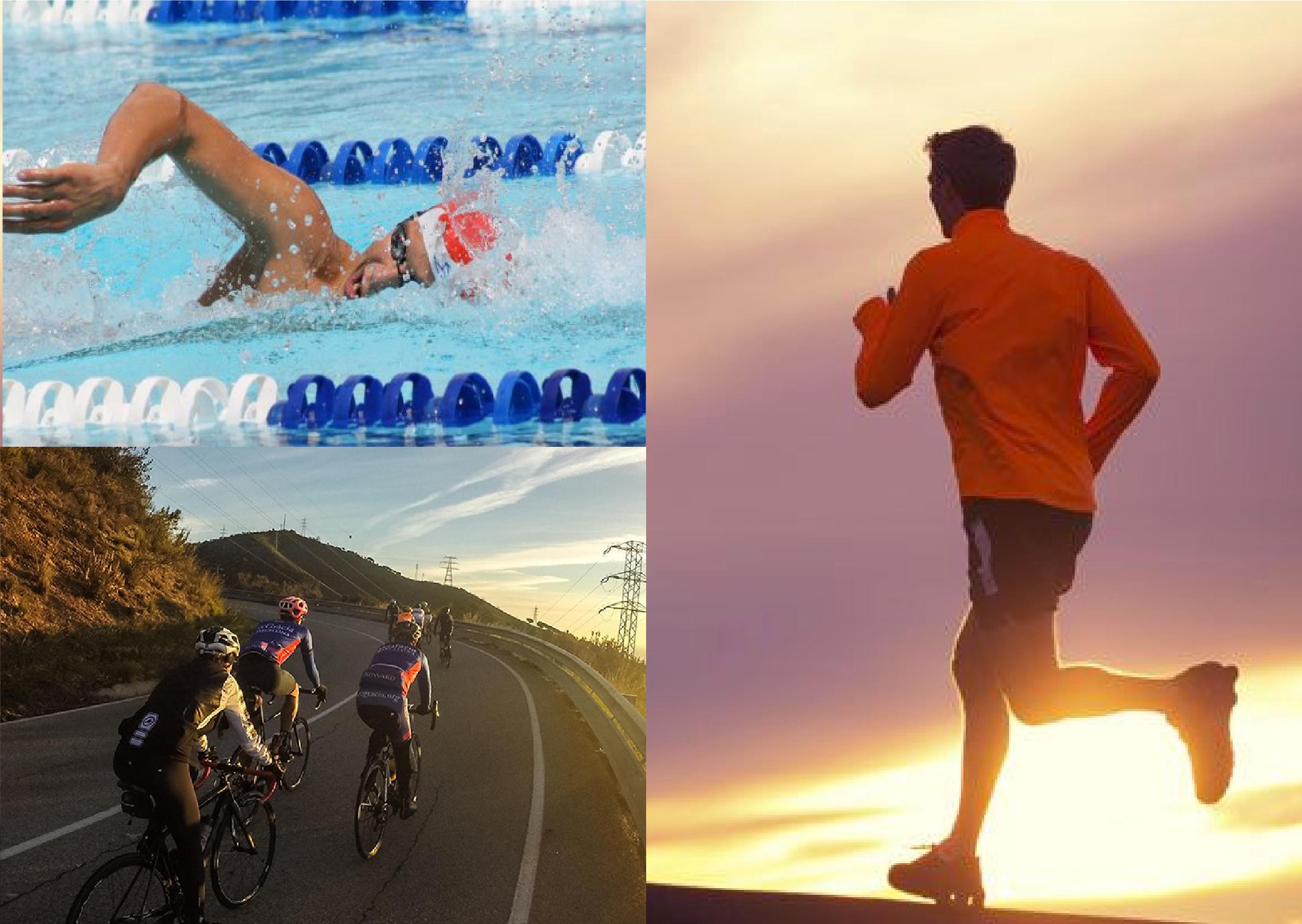 Fragmentación del ADN espermático como resultado del entrenamiento de alto  rendimiento en atletas masculinos de triatlon. 0d65c79405